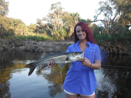 Sarasota river fishing charters