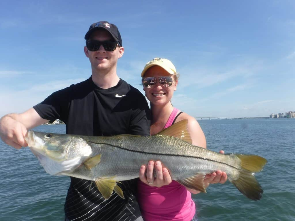 Sarasota snook fishing