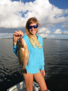 Sarasota mangrove snapper fishing