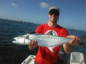 Sarasota Spanish mackerel fishing