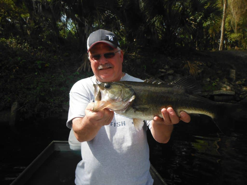 Sarasota bass fishing