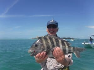 Siesta Key fishing charters