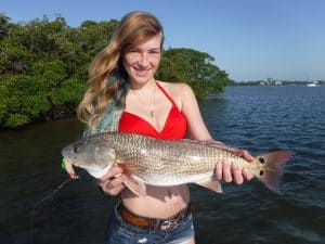 Sarasota fishing calendar