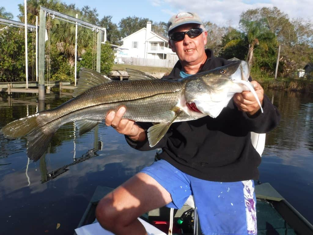 snook fishing tackle and lures