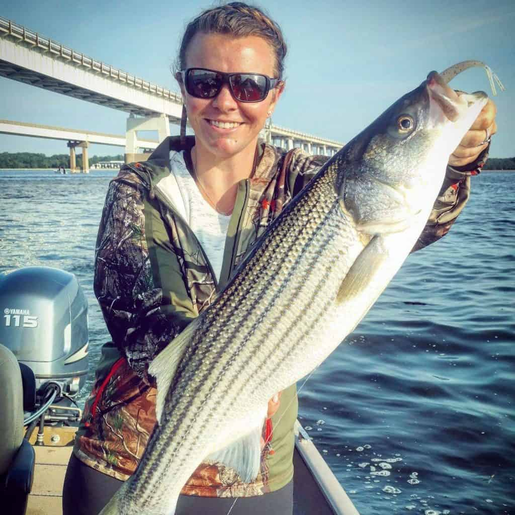 Chesapeake Bay Bridge striped bass
