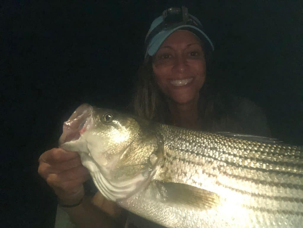 striped bass spots