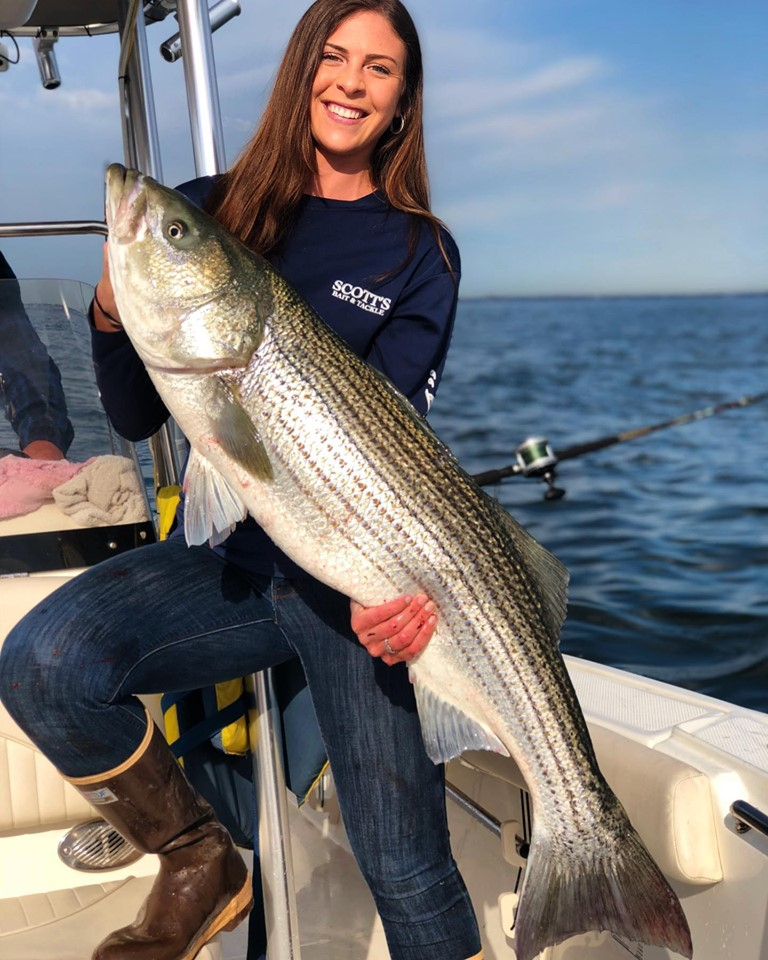 striped bass fishing tips