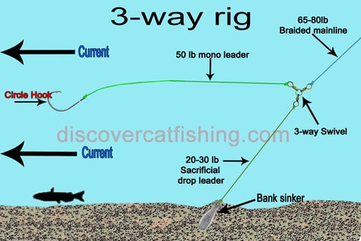 fishing for river catfish