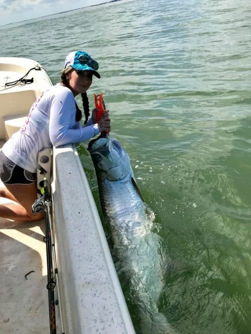 Sarasota fishing guide