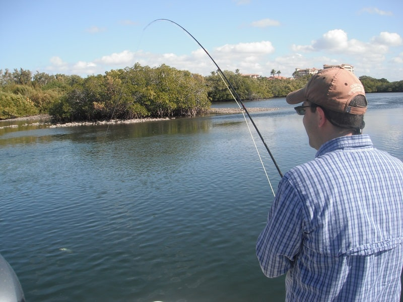 fly fishing in Florida