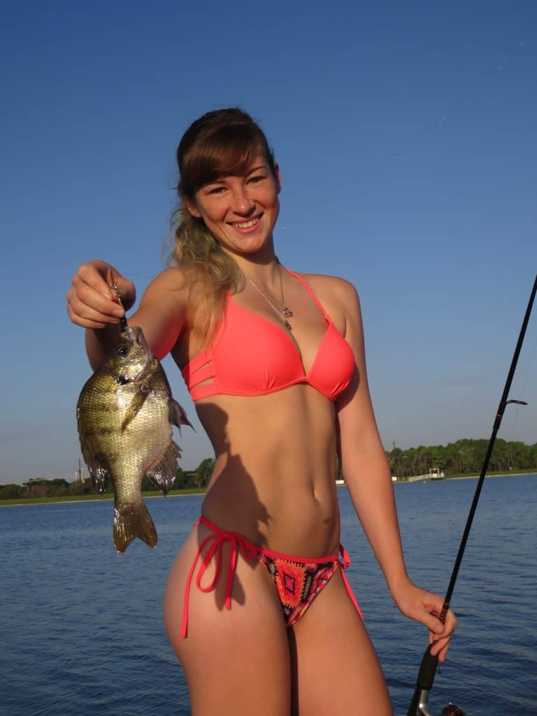 Best 9 bluegill and panfish fishing lures