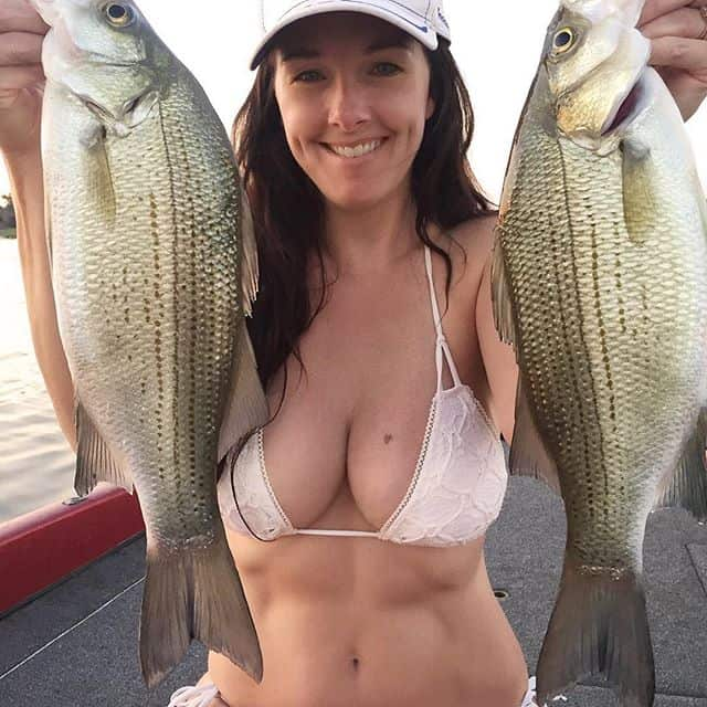 best striped bass lures