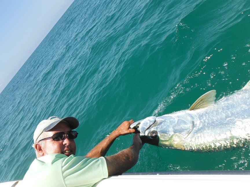 best tarpon fishing tackle and gear