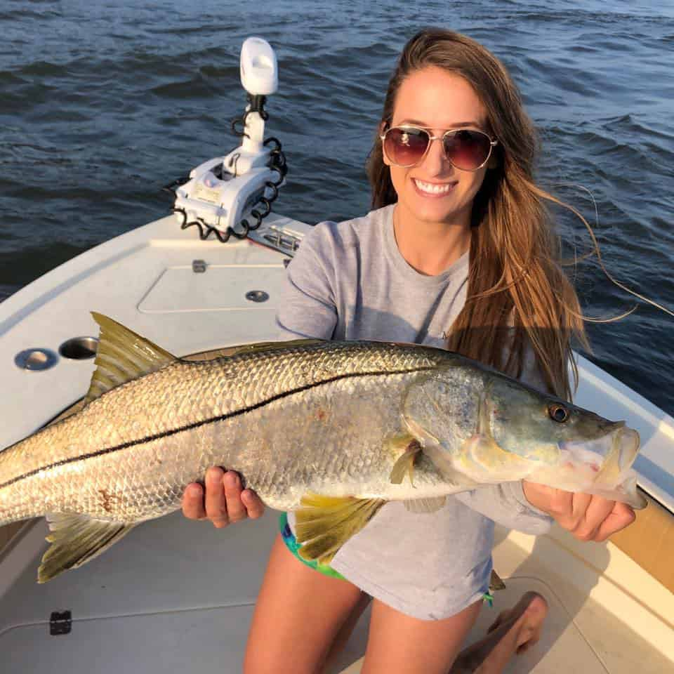 snook fishing in Tampa Bay