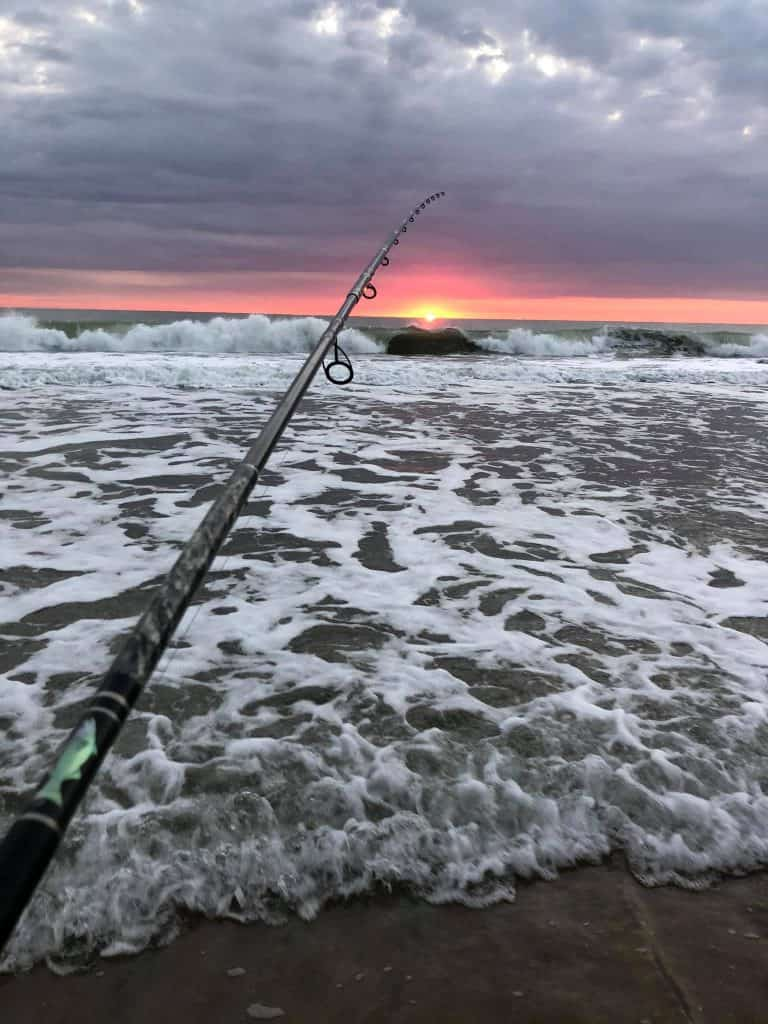surf fishing