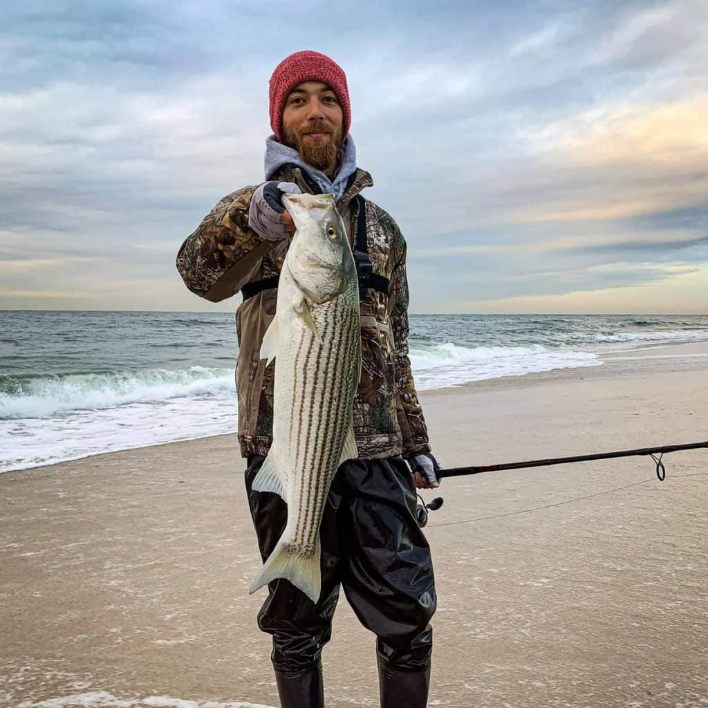surf fishing for striped bass