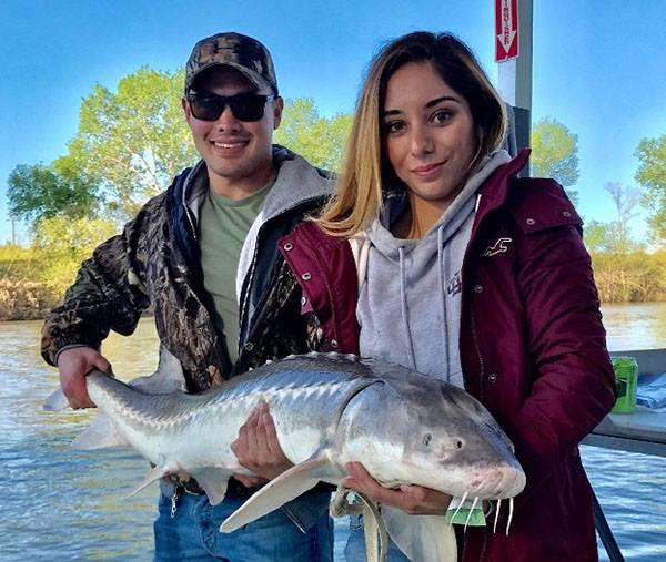 California freshwater game fish